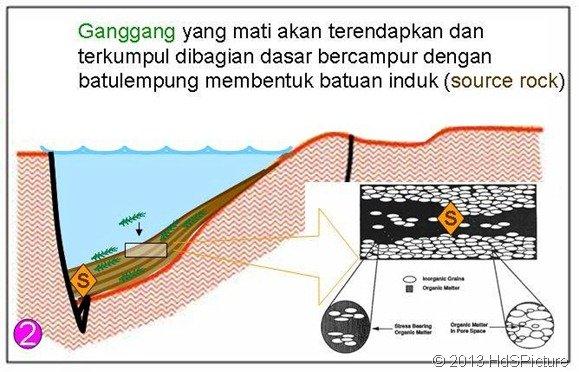 Gambar Proses Pembentukan Batuan Induk