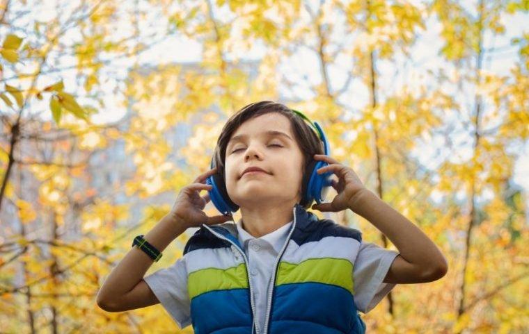 fungsi musik untuk meningkatkan intelegensi seseorang