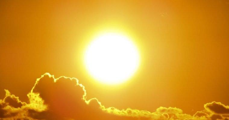 cahaya matahari mempengaruhi fotosintesis
